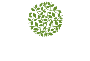 Logo Au Zest Naturel Orsay